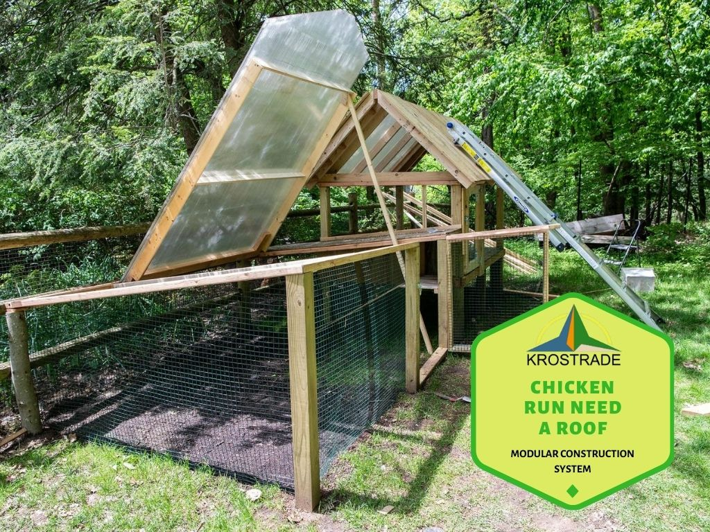 How To Build a Chicken Run?