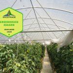 Greenhouse Season