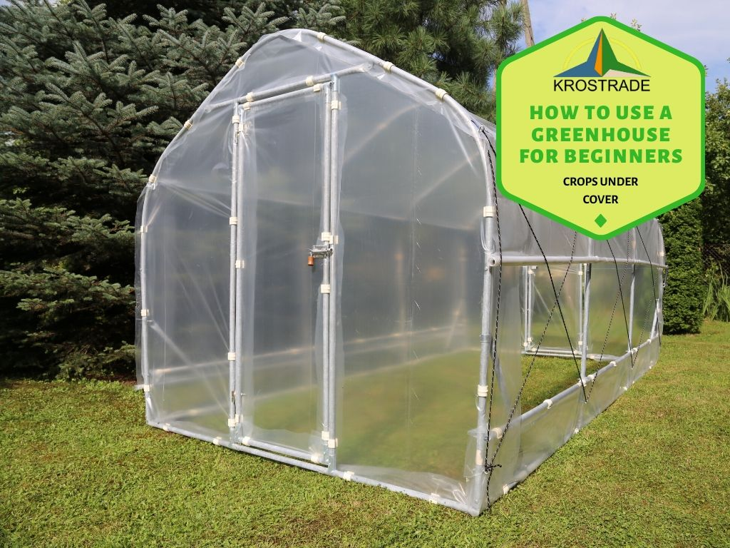 What To Grow In A Small Greenhouse