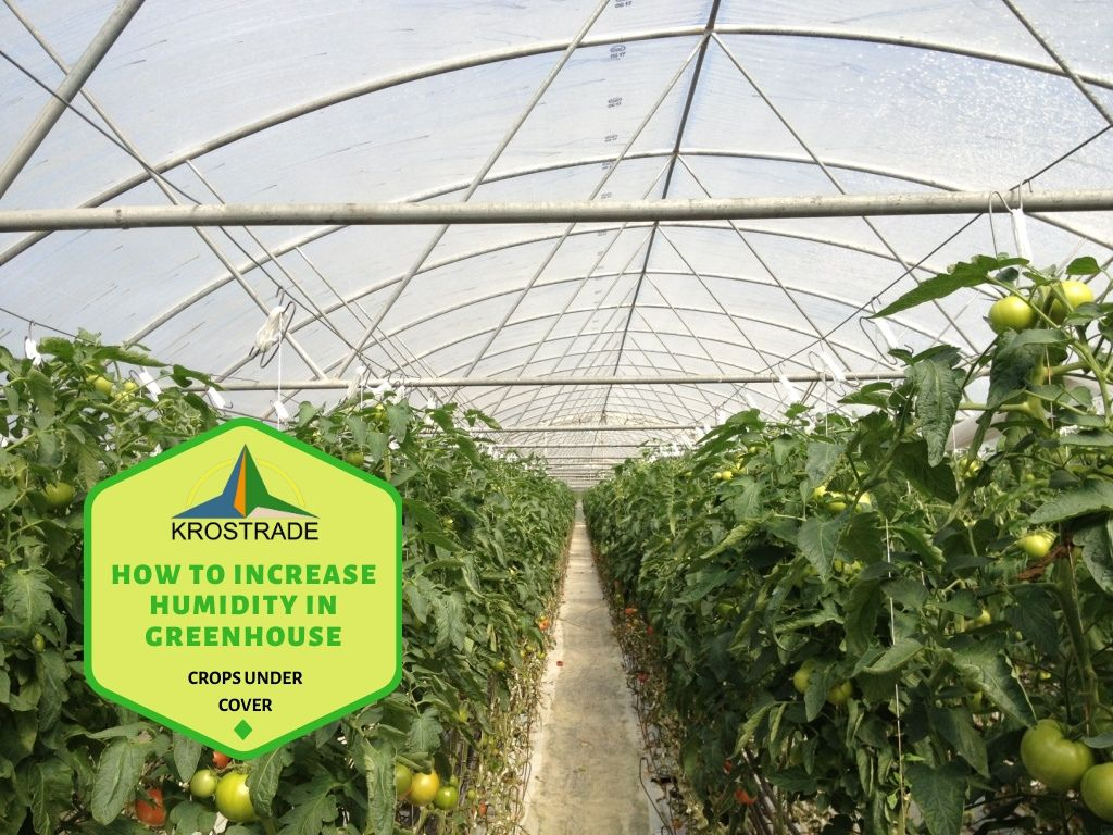 Ideal Humidity in a Greenhouse