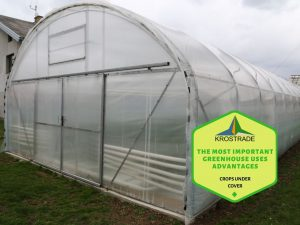 What is the Purpose of a Greenhouse