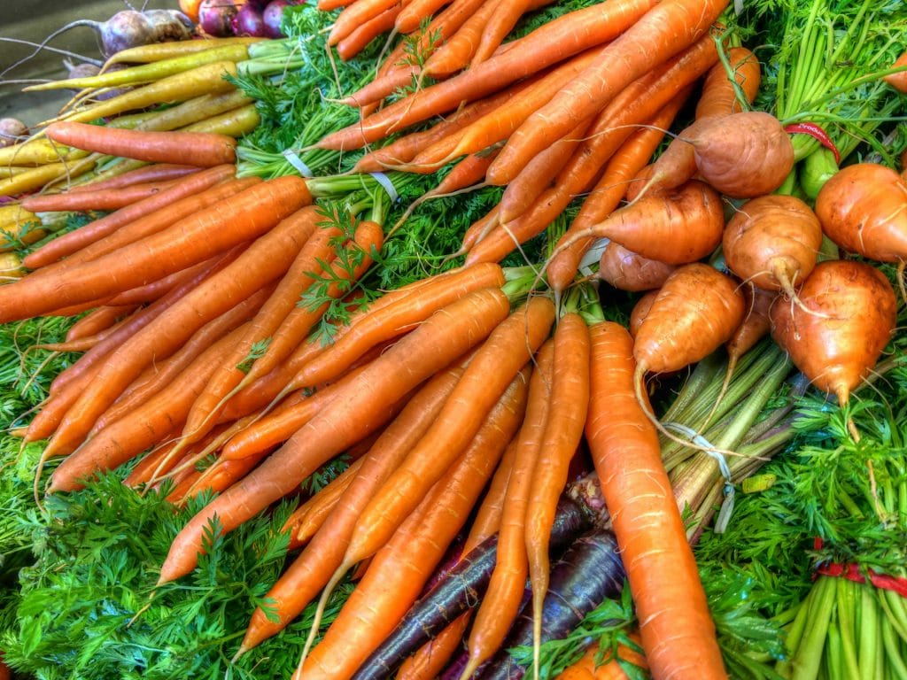 The Basics of Growing Carrots in San Diego