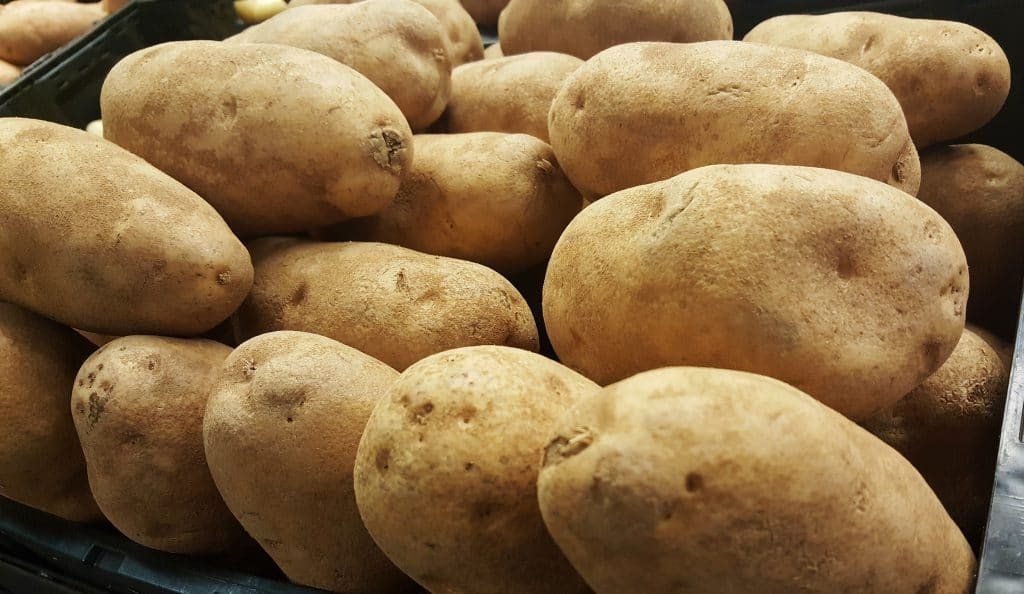 When To Plant Potatoes In Idaho
