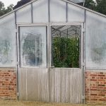 How to Clean Greenhouse Glass
