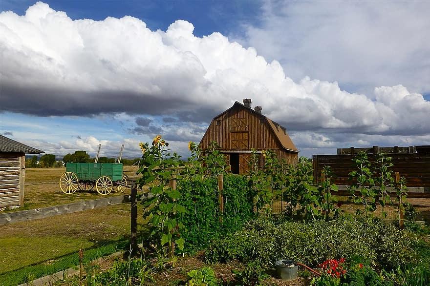 Wyoming Gardening Zone