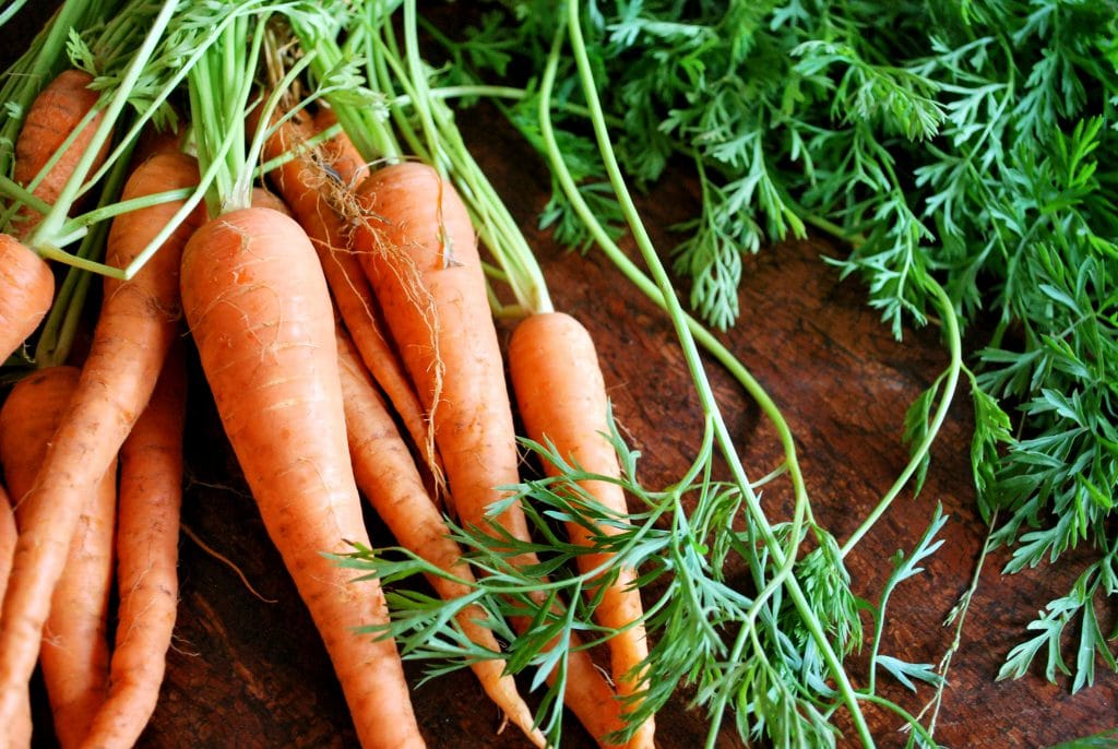 Growing Carrots In Arizona