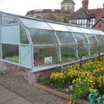 Walk-in Greenhouse vs Mini Greenhouse: Which is Better for Starting Plants