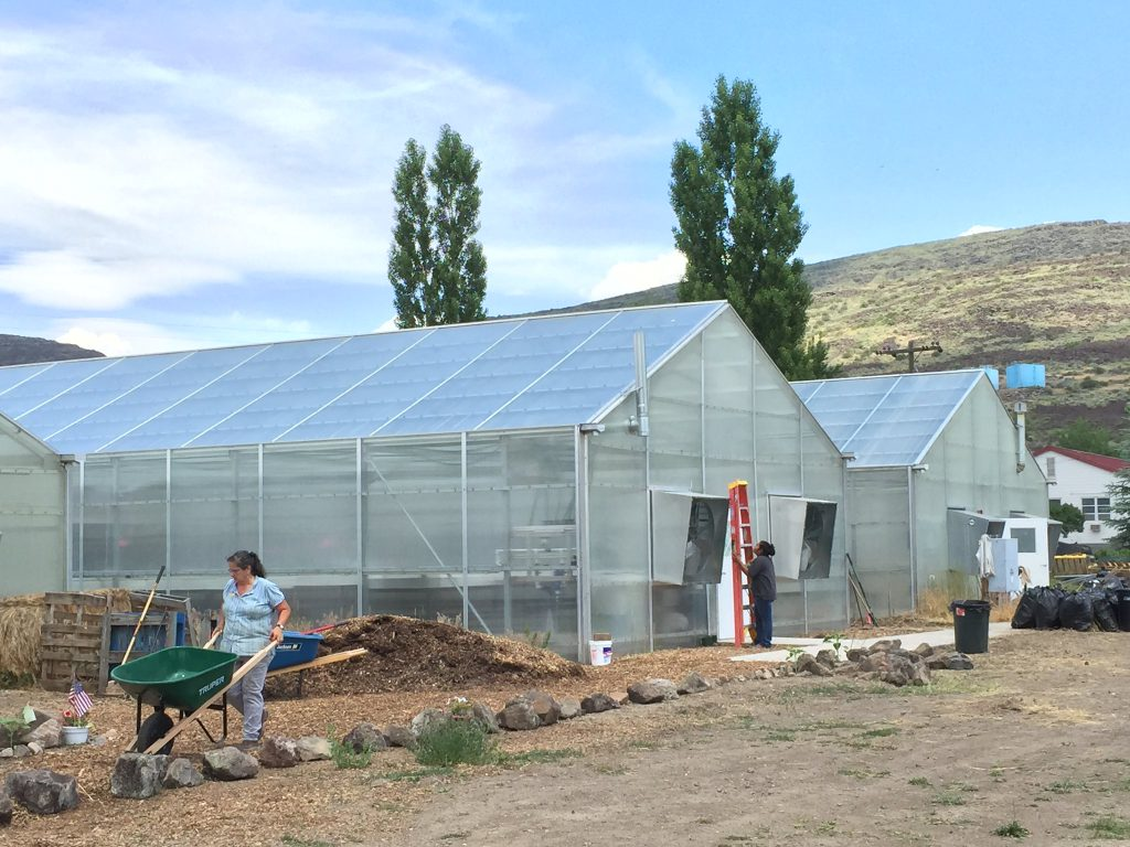 When To Apply For Growing Spaces Greenhouse In Kind Grant