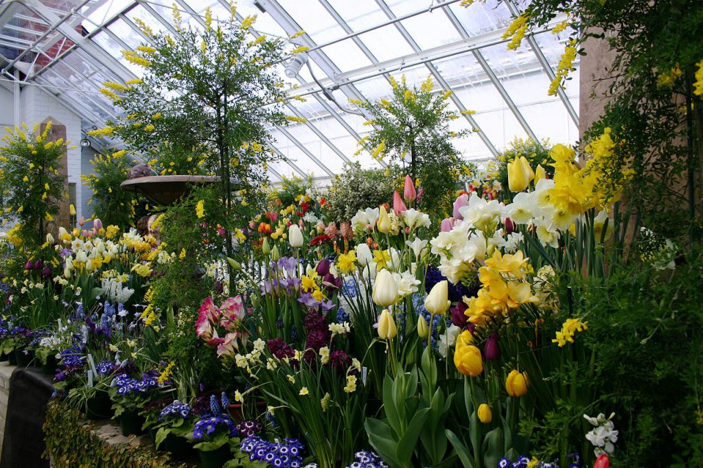 When To Start Planting Flowers In A Greenhouse In The Wisconsin Region
