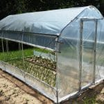 What Is A Good Size Hobby Greenhouse For You