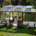 What To Grow In A Hobby Greenhouse