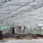 How To Choose Greenhouse Flooring Correctly