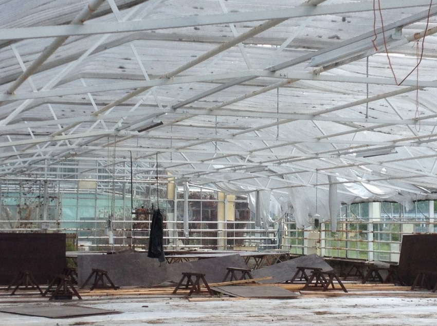 How To Choose Greenhouse Flooring
