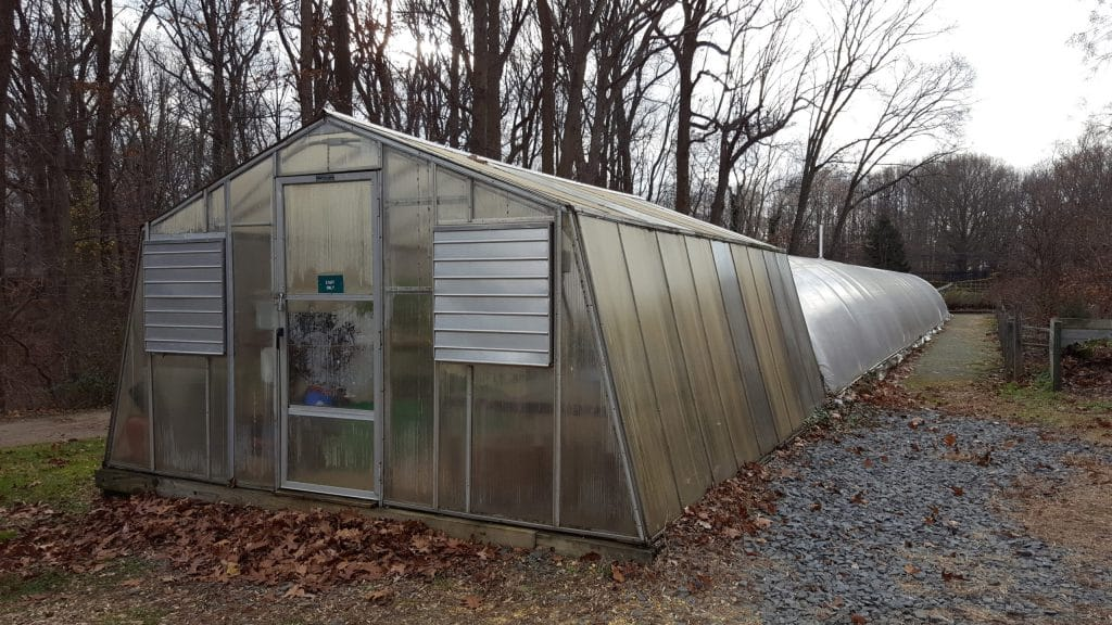 How to Convert a Greenhouse into a Chicken Coop