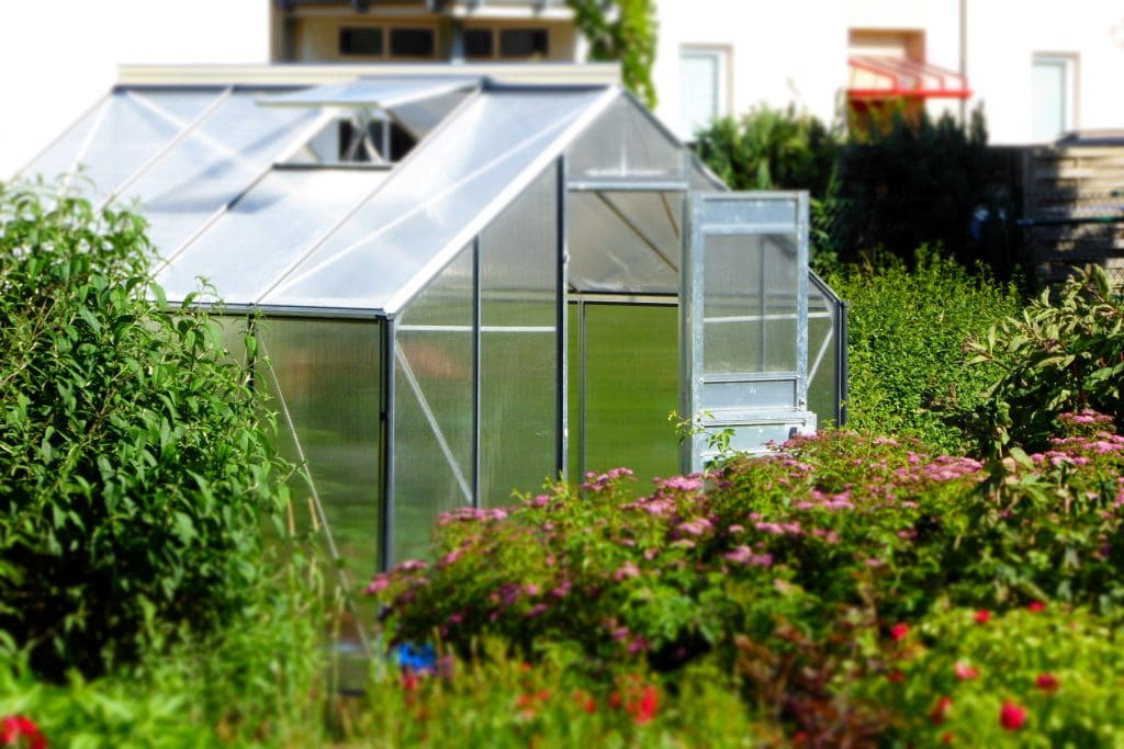 Which Way Should A Hobby Size Greenhouse Face