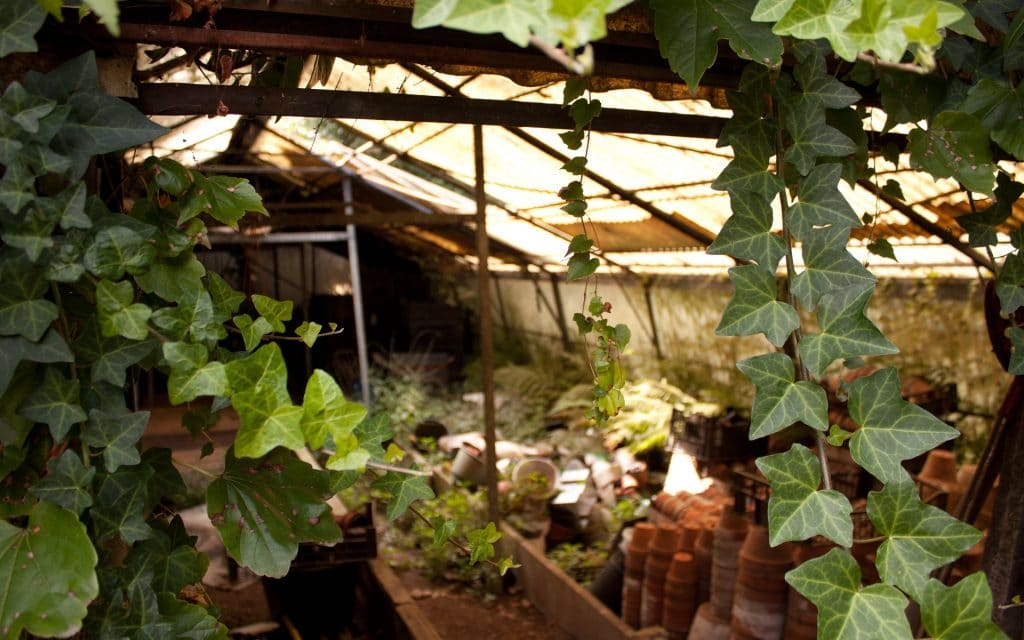 How Do You Hang Shade Cloth In A Hobby Greenhouse