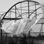 How Do I Protect My Greenhouse From Wind