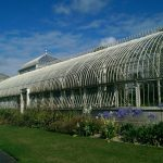 How Much CO2 Do Greenhouses Use?