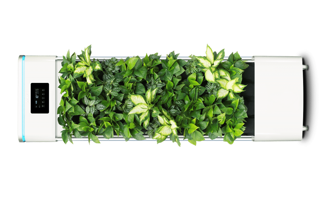 How Long Do Smart Pots Last And What To Expect