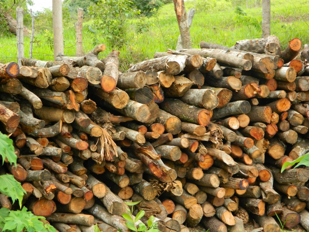 how to dry firewood fast