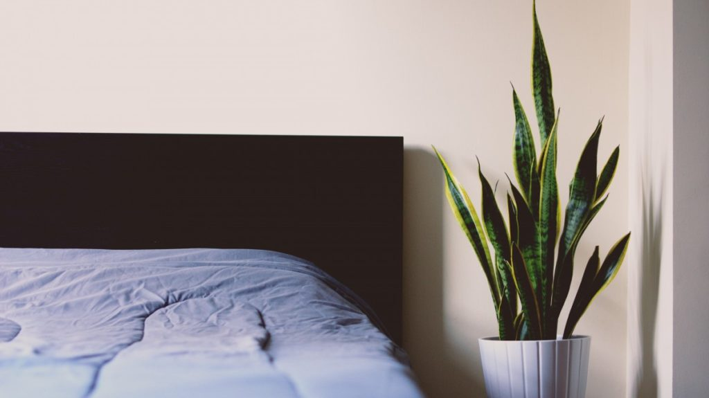 how to put a memory foam mattress topper on your bed