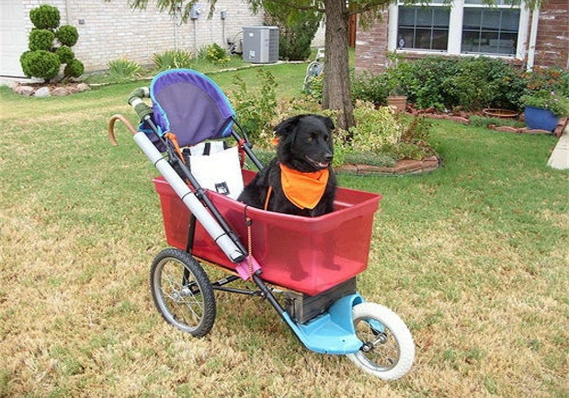 How To Make A Dog Stroller