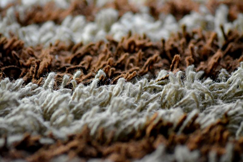 how to remove smell from water damaged carpet