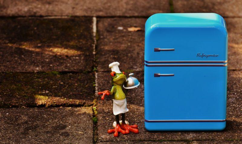 how to clean fridge door