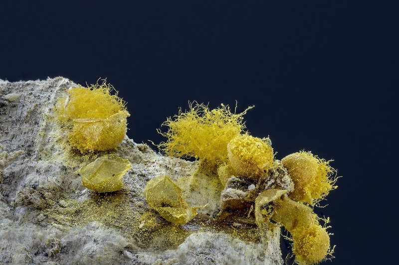 how long do mold spores stay in the air