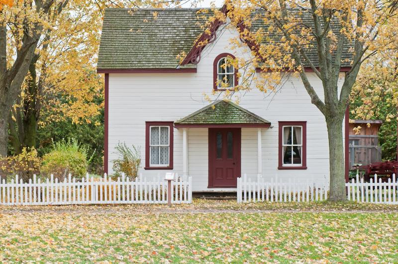 how much does mold devalue a home