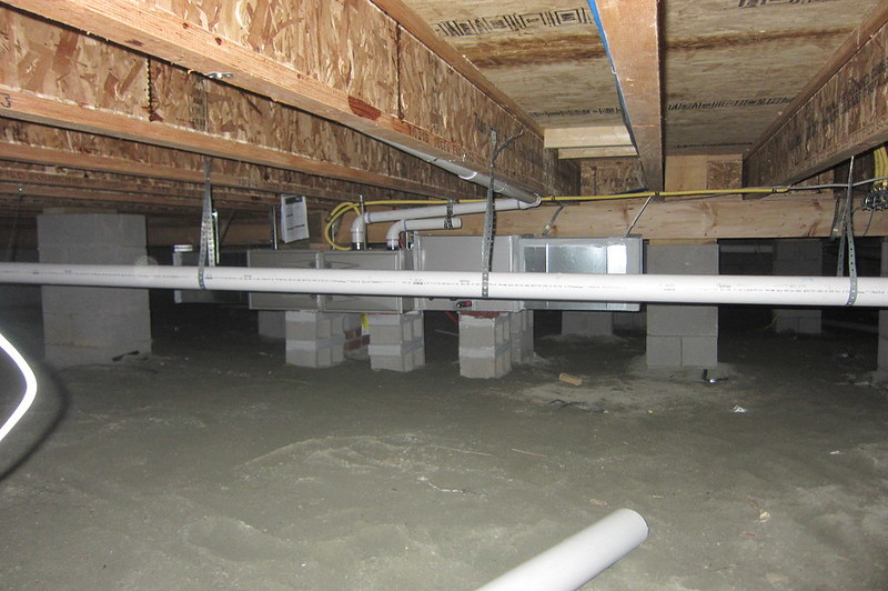 how much mold in crawl space is acceptable