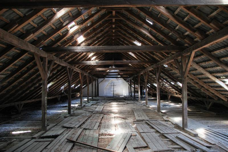 how to get rid of mold in attic