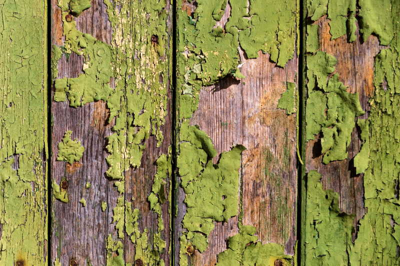 how to remove green mold from wood deck