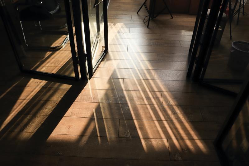 what does mold look like on hardwood floors