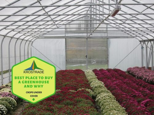The Criteria to find the right greenhouse for you
